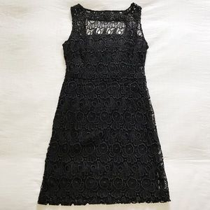 BB Dakota | Black Lace Dress